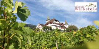 Schloss Weinstein